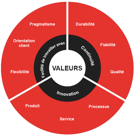 Graphic core values NOVEXX Solutions